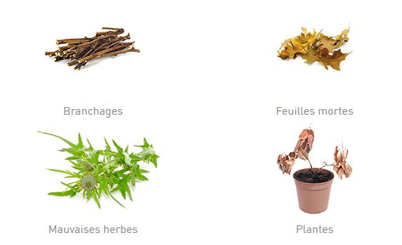 4 soorten groenafval met een illustratieve foto